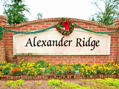 Alexander Ridge Winter Garden Fl-Homes For Sale