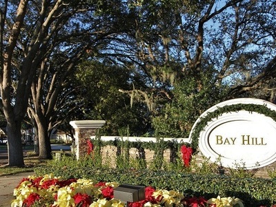 Bay Hill Orlando Fl-Bay Hill homes for sale