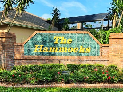 The Hammocks Ocoee Fl Homes For Sale