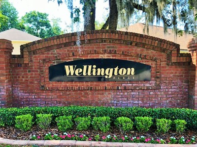 Wellington Place Homes For Sale Ocoee Fl