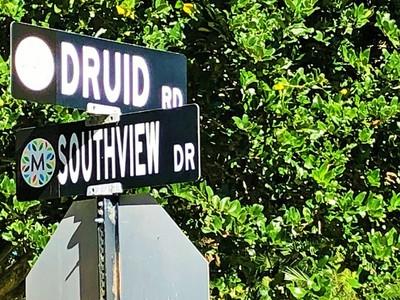 Druid Hills Maitland Fl Homes For Sale