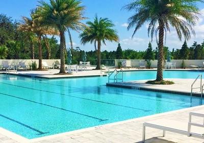 Homes For Rent In Waterside Winter Garden FL